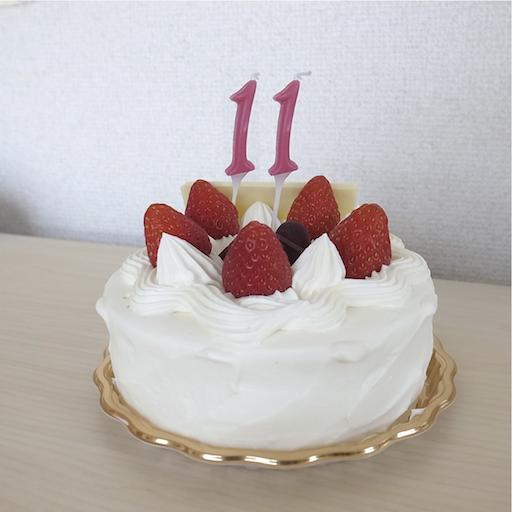 2014_11_ani.png